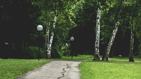 setting boundaries between pathway and lamp post
